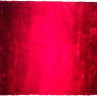 VEGAS 40 RED